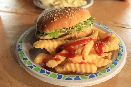 The Fish Hut: my ono burger