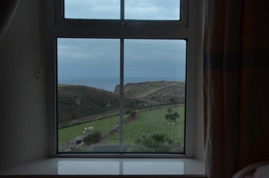 The Avalon Guest House B&B: through the window