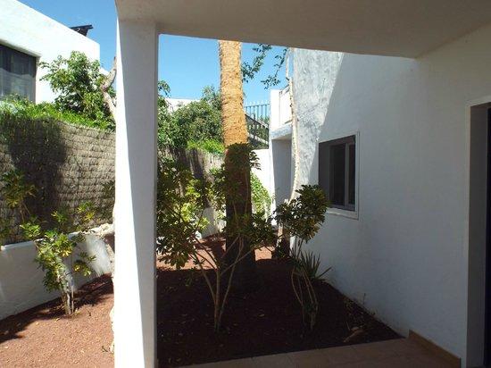 Apartments Parque Tropical: Patio area