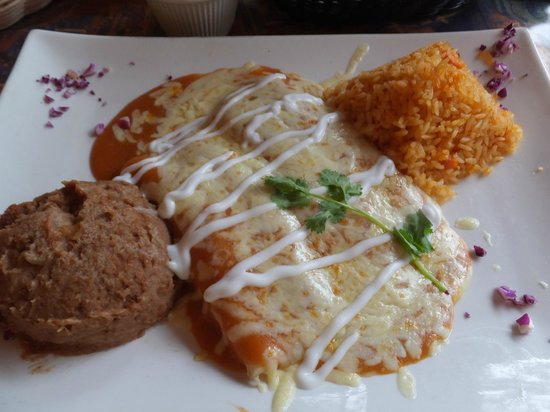 El Mariachi Tequila Bar & Grill : Cheese enchiladas with Suiza Sauce