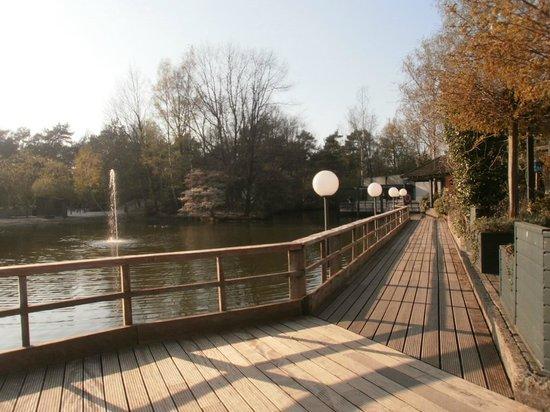 Center Parcs Erperheide: bord du lac
