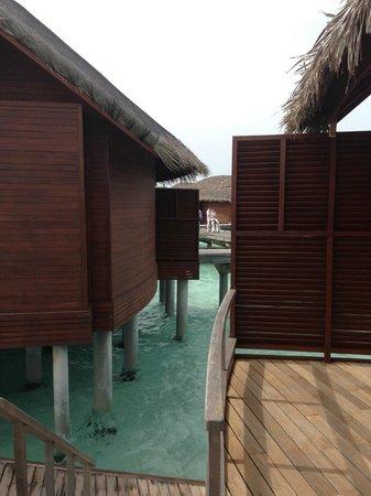 Anantara Dhigu Maldives Resort: from my room