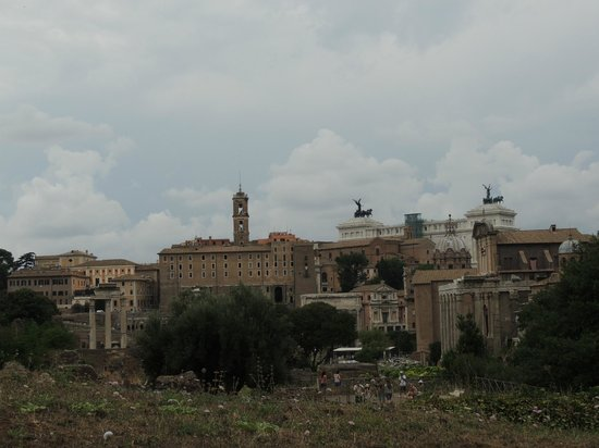 Rome Coliseum Guided Tours : Roman Forum and Palatine Hill