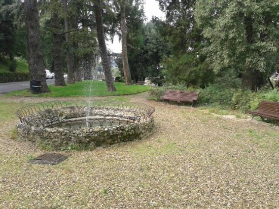 Photo of folon e il giardino delle rose taken with tripadvisor city guides folon e il giardino - Il giardino delle rose ...