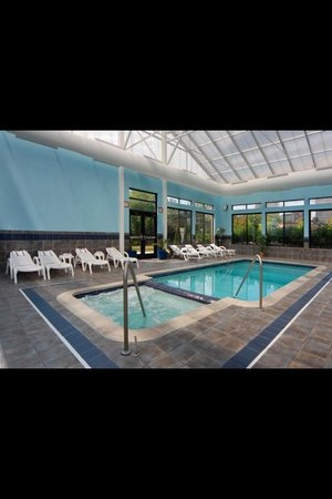 Comfort Suites Southfield: Pool Area