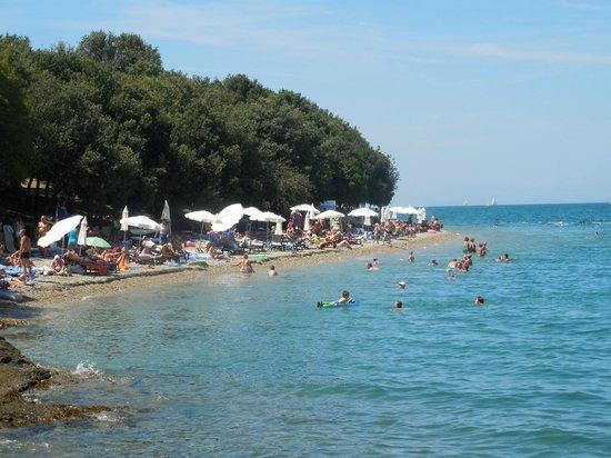 Valamar Club Tamaris: oberer Teil des Strandes