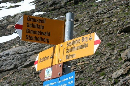 Schilthorn Hut: Way Sign halfway between Hut and Summit    - Schilthornhutte