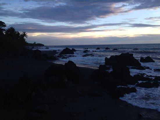 Venus Surf Adventures: Playa pavones muy cerca de punta banco