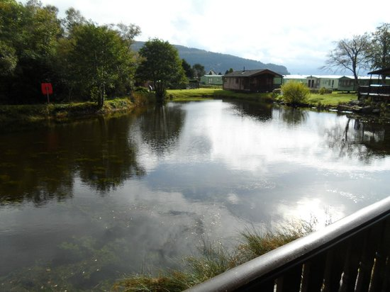 Tralee Bay Holiday Park: View from the Willows Lodges
