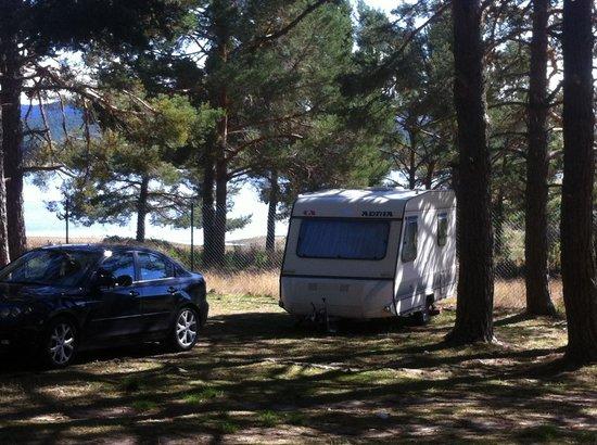 Camping Urbion : emplazamiento en el camping