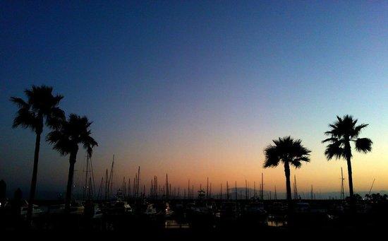 Hotel Coral & Marina: Zona de Marina