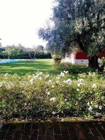 Borgo Rosso B&B Country House: 4