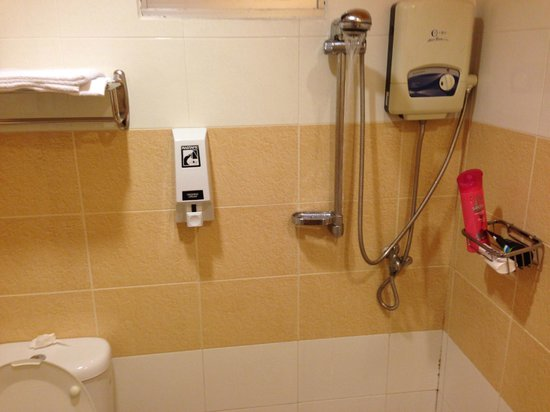 Hotel Conforto : Bathroom (shower with no stall)