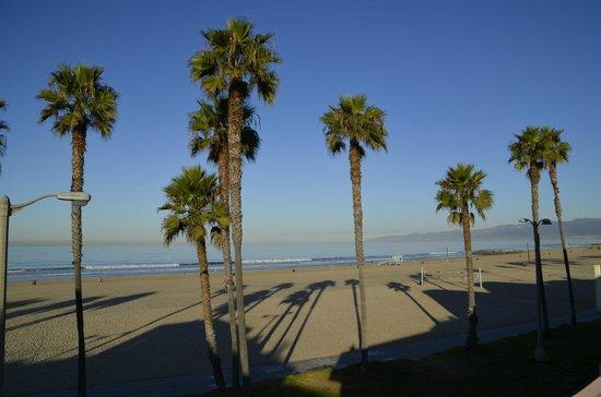 Venice On The Beach Hotel: Vue du toit terrasse