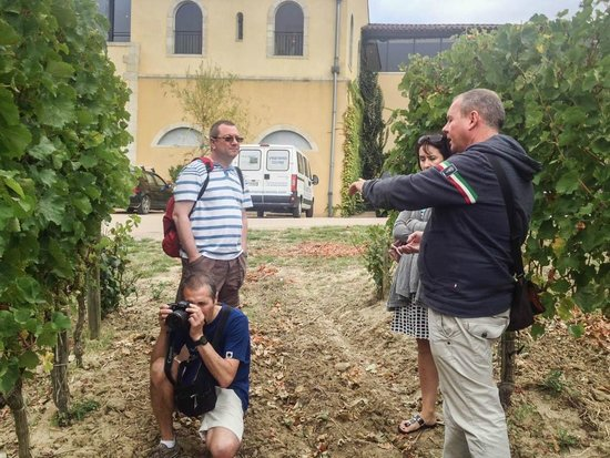 Vin en Vacances - Day Tours : At Domaine Gayda with Marcel