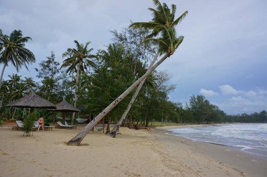 Coco Palm Beach Resort & Spa : Strand