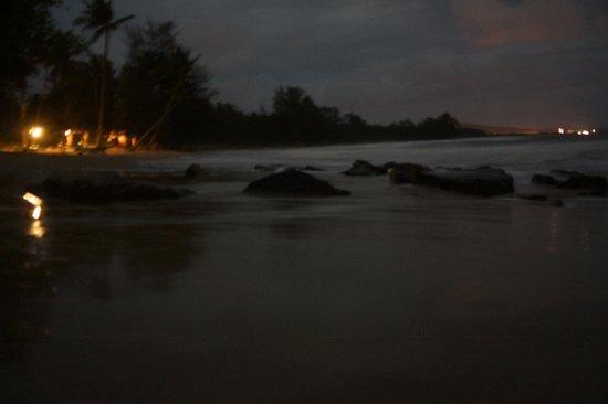 Coco Palm Beach Resort & Spa : Strand bei Nacht