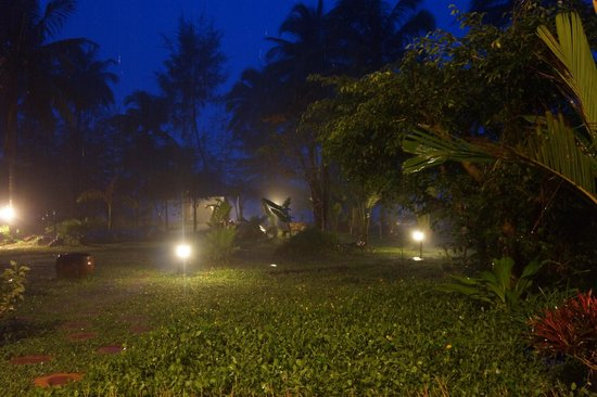 Coco Palm Beach Resort & Spa : Garten