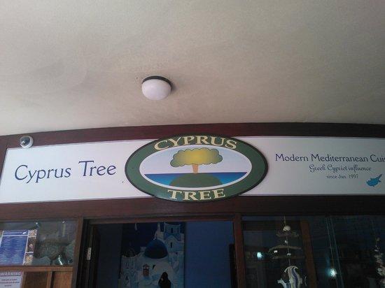 The Cyprus Tree: Cyprus Tree