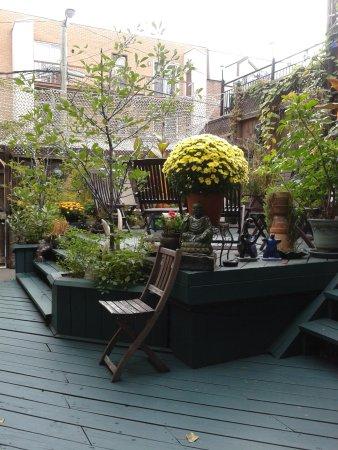 La Loggia Art & Breakfast: giardino interno