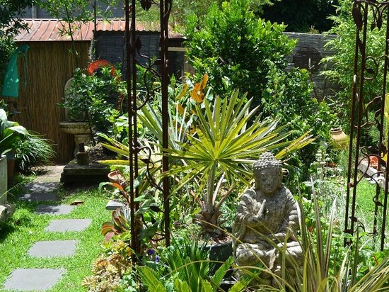 The balinese inspired garden viewed from the botannix yoga studio picture of botannix garden - Palmengarten anlegen ...
