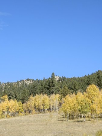 Golden Gate Canyon State Park : Fall colors