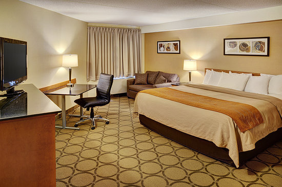 Comfort Inn - New Glasgow: Spacious King Rooms