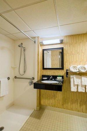 Handicapped Walk-In Shower