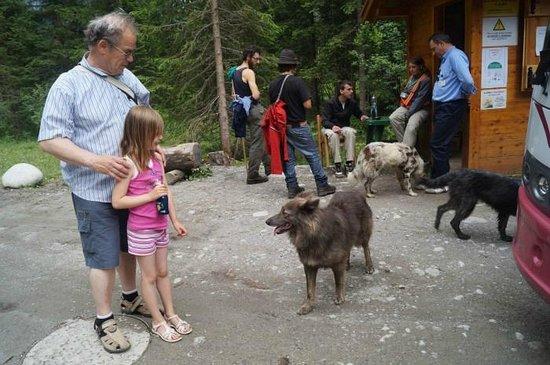 Cascate Val Genova : De boswachters bij de pendelbus