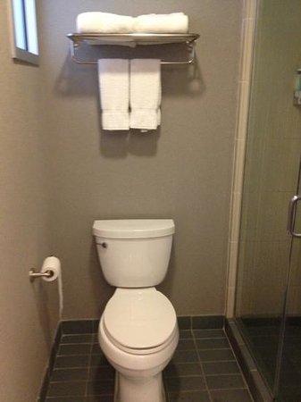Aloft Harlem: bathroom