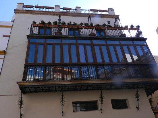 Conde de Torrejon 10 : Varanda contornada por plantas.