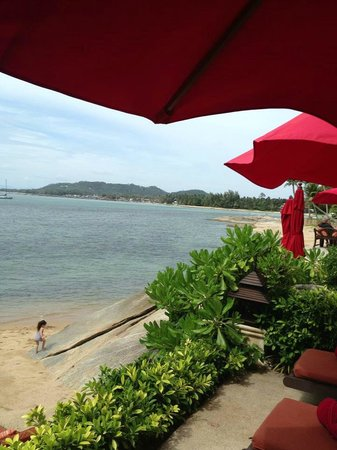 Rocky's Boutique Resort: View front room
