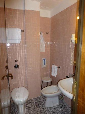 Hotel Delle Nazioni: Vintage bathroom - OLD to be precise!