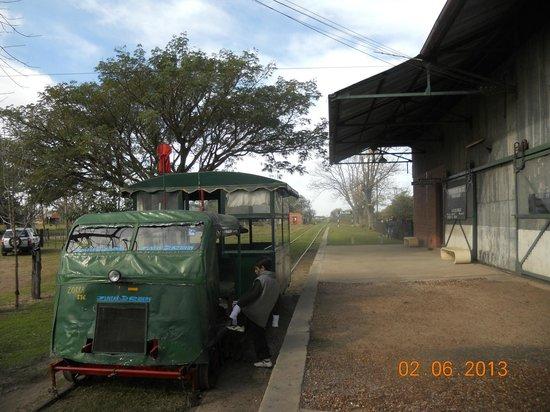 Villa Elisa, Argentina: la zorrita de paseo antes de salir.