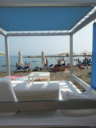 Hotel Domus: op het strand vlakbij het hotel