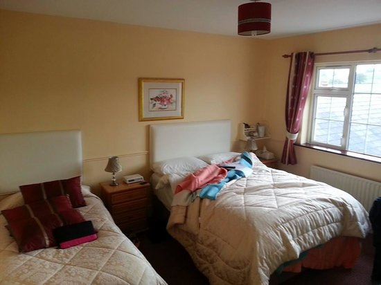 Tir Na Nog Bed & Breakfast: double bed