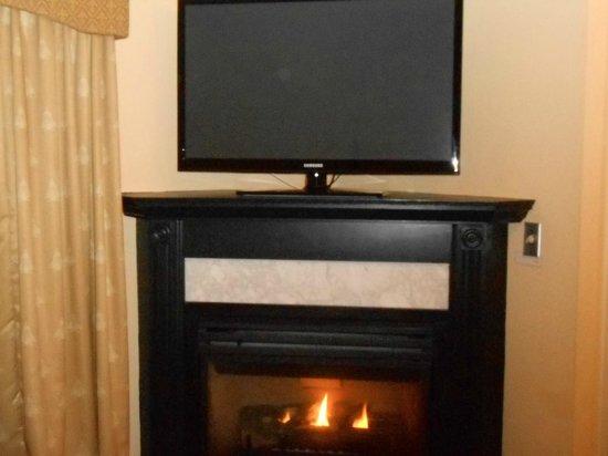 Senator Inn & Spa: Fire place