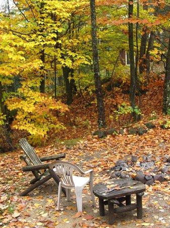 Wildman Adventure Resort: From the Chalet porch