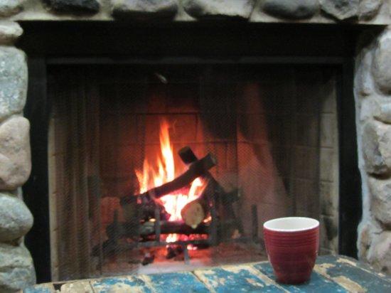Wildman Adventure Resort: Chalet fireplace