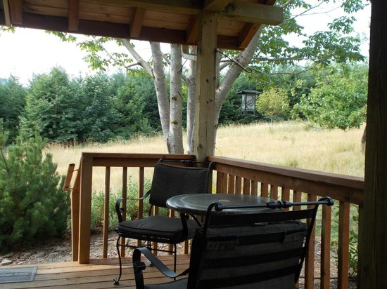 Carson Ridge Luxury Cabins : View from the Porch Swing of the Meadow
