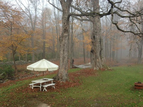 Race Brook Lodge: Outside on a foggy day.