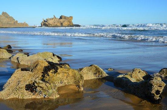 Brenton on Sea: The rocks on the beach.