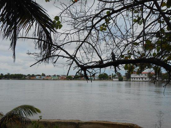Bird's Isle: Waterfront Views
