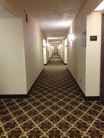 Drury Inn & Suites San Antonio Airport: Hallways