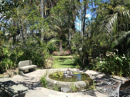 HACIENDA LA CARRIONA: garden