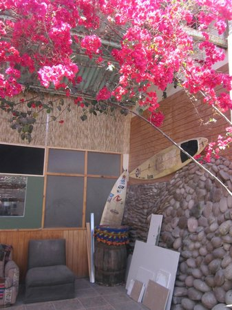Arica Surf House: pretty flowers downstairs