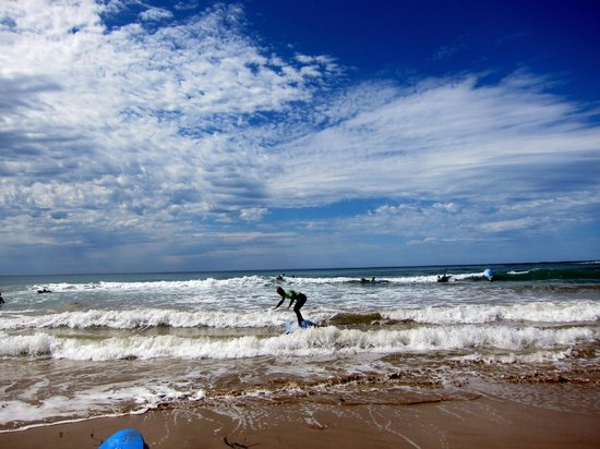 Great Ocean Road Surf Tours: Great Ocean Surf Tour