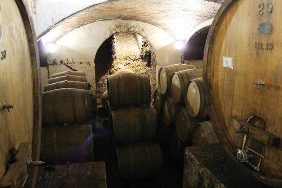Abbadia di Montepulciano, Italy: wine cellar