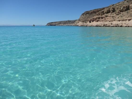Espiritu & Baja Tours: beautiful bay where with eat the ceviche