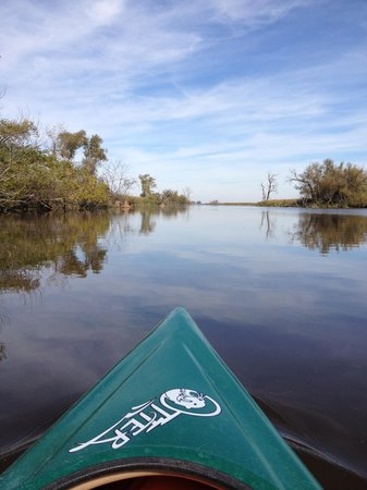 Horicon Marsh Boat Tours- Day Tours: Kayaking Horicon Marsh